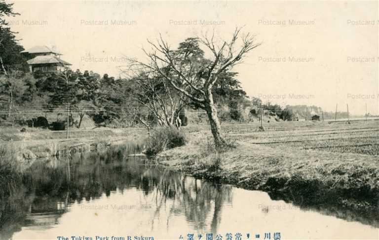 ll116-The Tokiwa Park From R Sakura 櫻川ヨリ常盤公園ヲ望ム 茨城