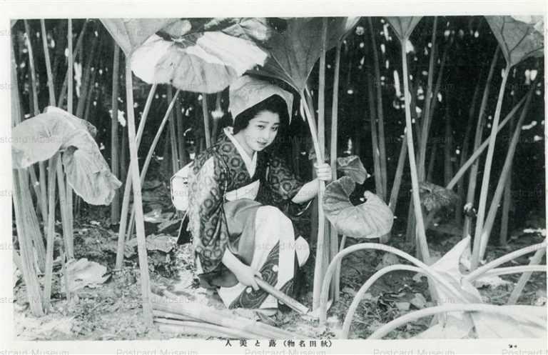 er457-Specialty Butterbur and Beauty Akita 蕗と美人 秋田名物