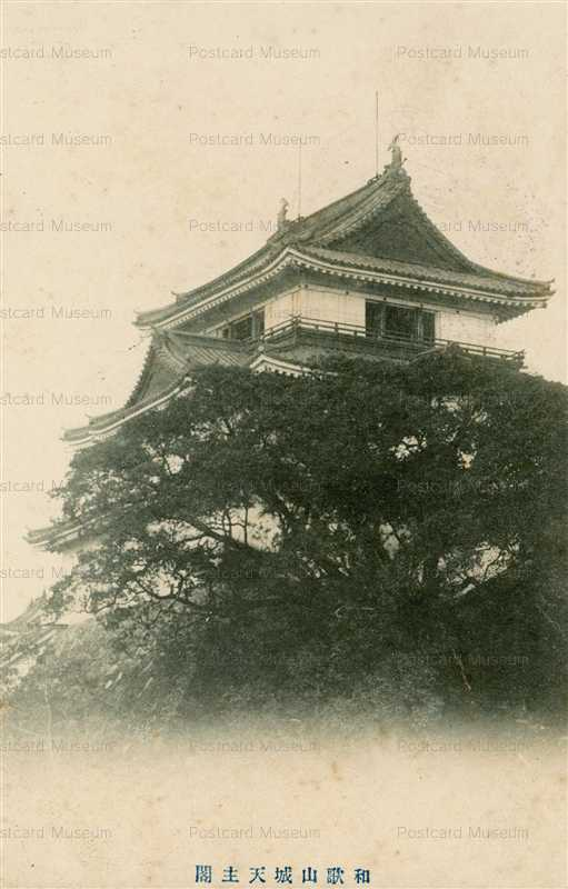 zy155-Wakayama castle 和歌山城天守閣