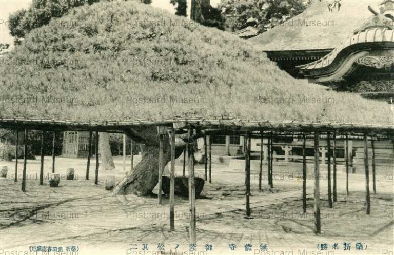 ef129-Munou Temple Koori Fukushima 無能寺 御蔭ノ松 其ニ 桑折名勝