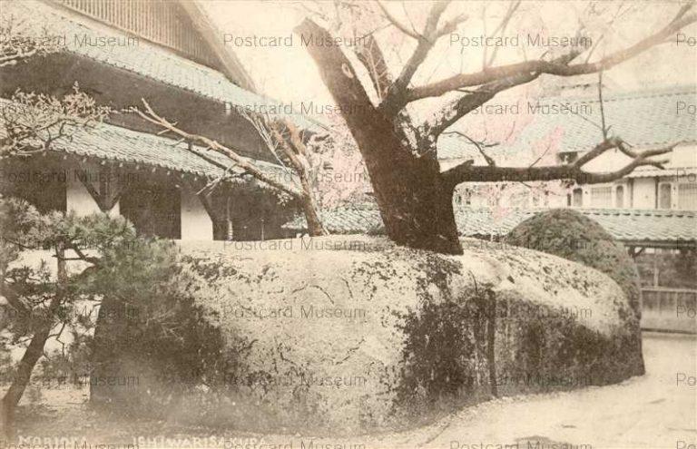 ei111-Ishiwarisakura Morioka 石割桜 盛岡