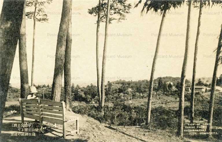 lt240-Gamo Shrine from Hachimanyama Park Utsunomiya 八幡山公園より蒲生神社の遠望 宇都宮名勝