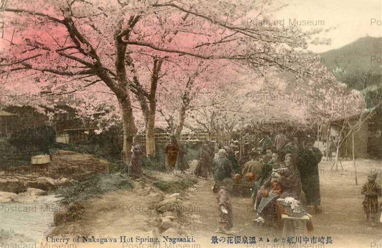na265-Cherry of Nakagawa Hot Spring nagasaki 長崎中川郷カルルス温泉桜花の景