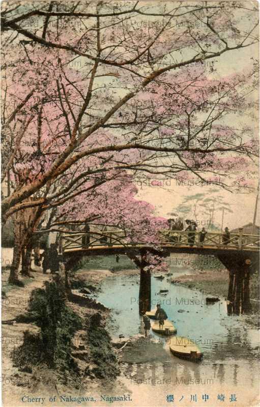 na267-Cherry of Nakagawa,Nagasaki 長崎中川ノ桜