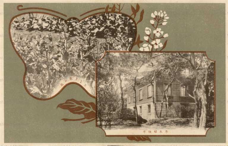 p125-乃木會 乃木邸後方と主なき菜の花 乃木将軍邸
