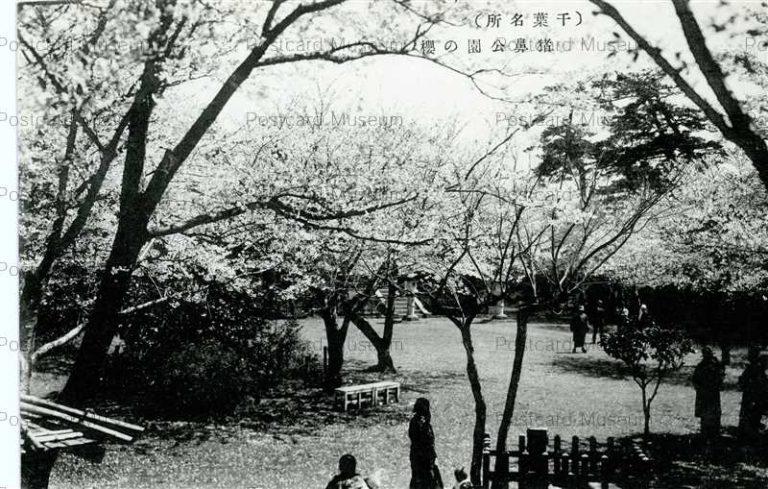 lb110-Inohana Park Chiba 猪鼻公園の櫻 千葉名勝