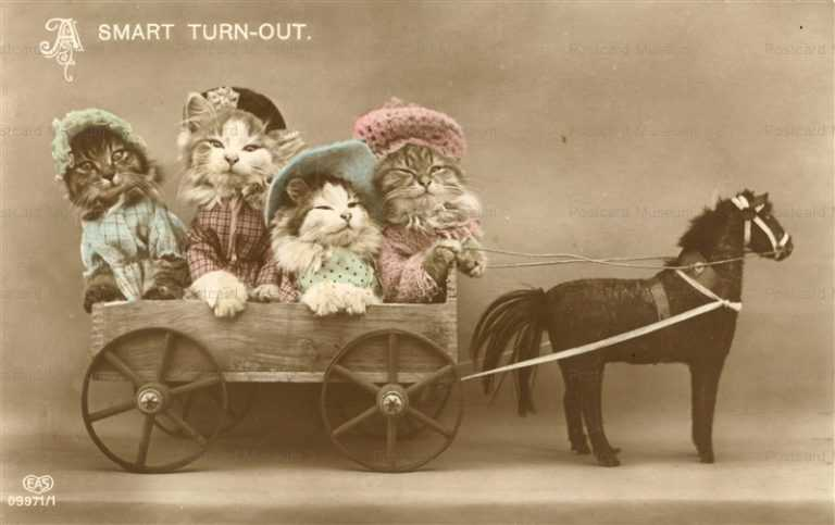 ac020-Dressed Cats on Horse Carriage