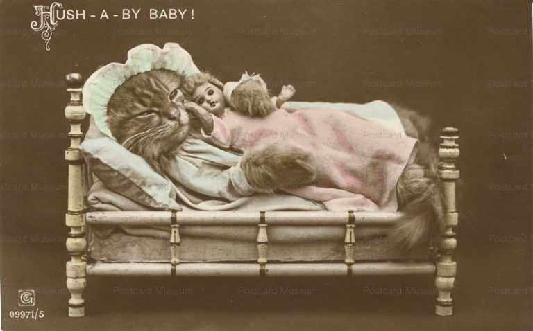 ac021-Kitten in Bed with Doll