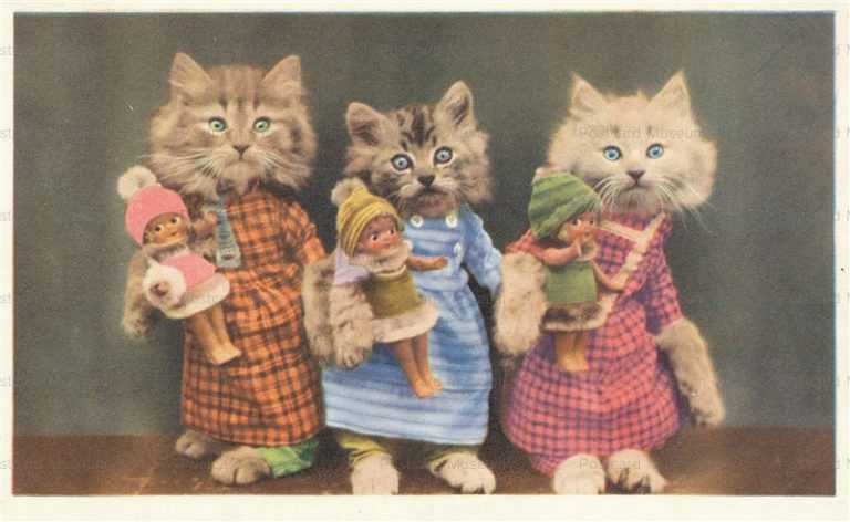 ac030-Dressed 3Cats Holds Babys
