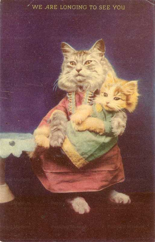 ac040-Dressed Cat Holds Baby