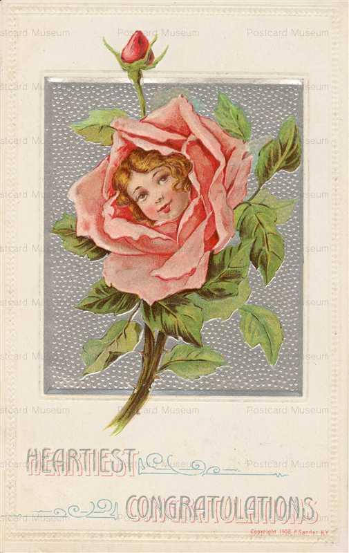 c137-Heartiest Congratulations Girl in Red Rose P Sander