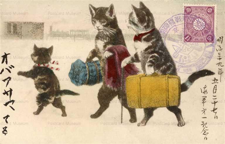 cat010-旅行の猫