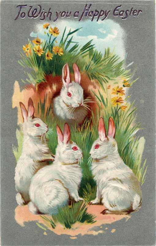 e003-Easter 4Rabbits