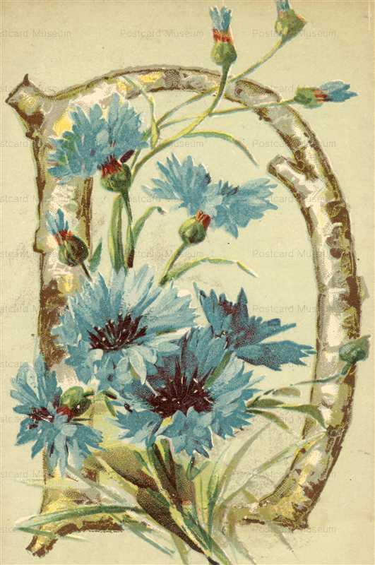 em050-Catherine Klein Letter D Flower