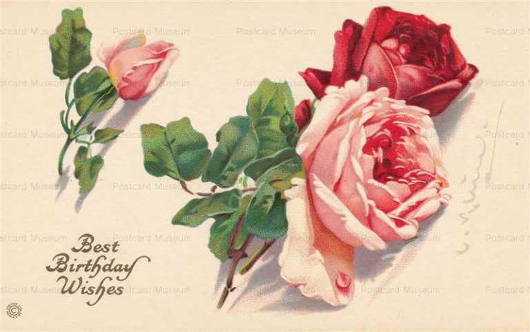 em060-Catherine Klein Rose Birthday Red Pink