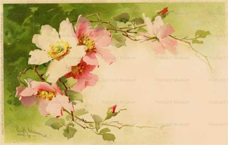 em076-Catherine Klein Pink Flower