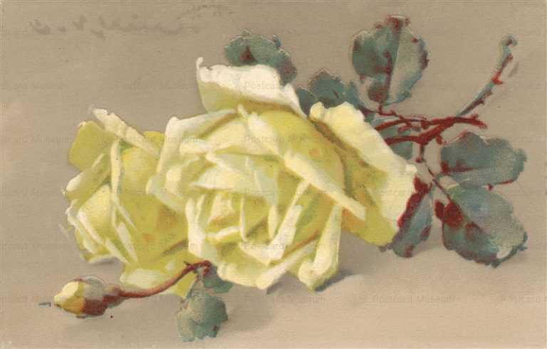 em088-Catherine Klein Romantic Yellow Roses