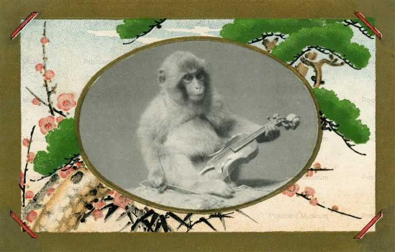 fd502-猿とバイオリン