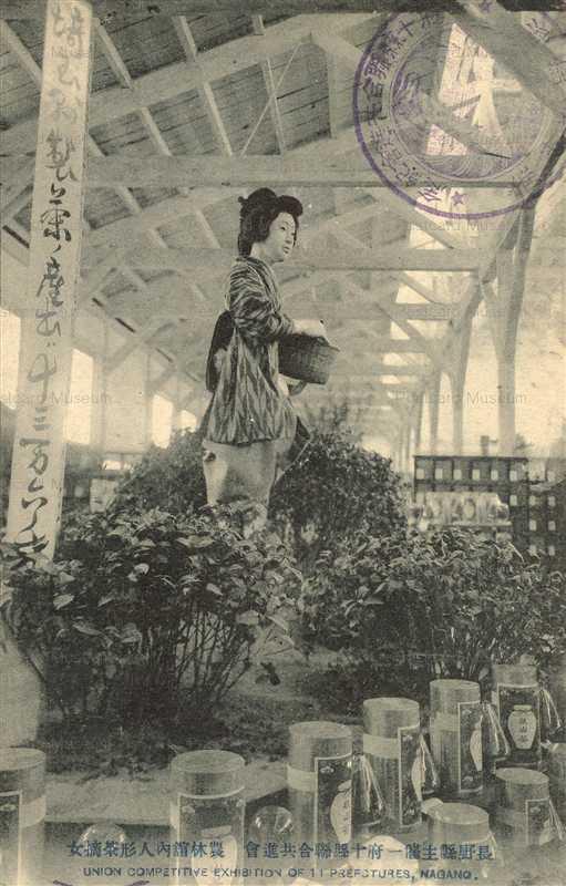 fib410-長野県主催一府十県聯合共進会 農林人形茶摘女