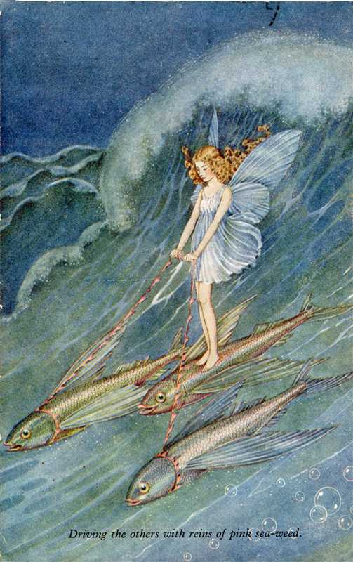 fo160-Ida Rentoul Outhwaite Driving the Others with Reins of Pink Sea-Weed