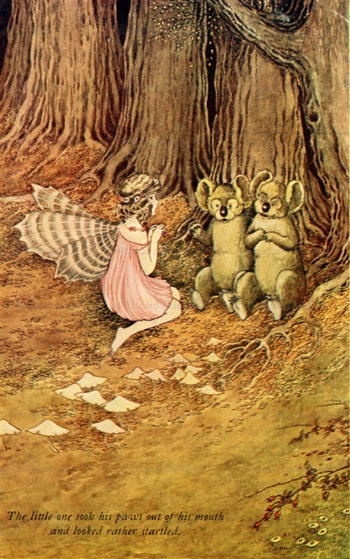 fo260-Ida Rentoul Outhwaite Fairy Girl with wings.Australian Koalas From The Little Fairy Sister
