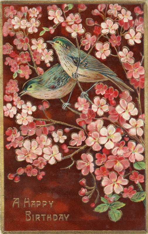 hb014-Birthday Birds