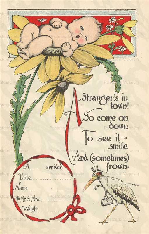 hb100-Stork Baby Birth Announcement Fantasy Stork Bird and Baby Sunflower