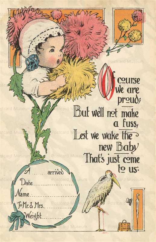 hb106-Stork Baby Birth Announcement Fantasy Stork Bird and Baby Chrysanthemum