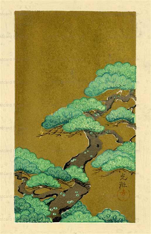 kfg011-光琳 松