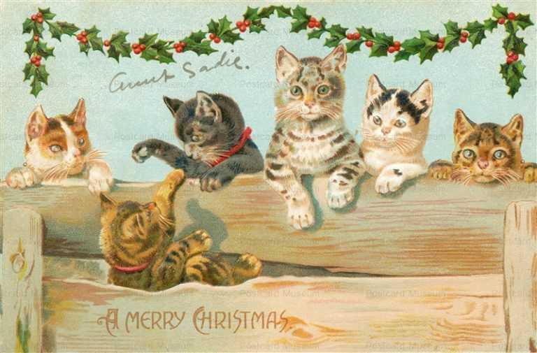 xm040-Merry Christmas Cat's