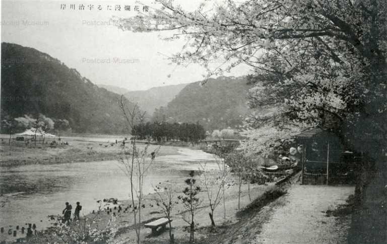 kfb013-Riverside Of Uji River 櫻花爛漫たる宇治川岸