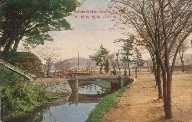 hf1440-Sakura Bridge Ume Bridge Obama 小浜公園 櫻橋梅橋
