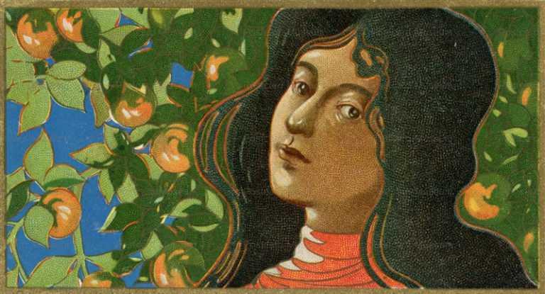 an020-柿と婦人図