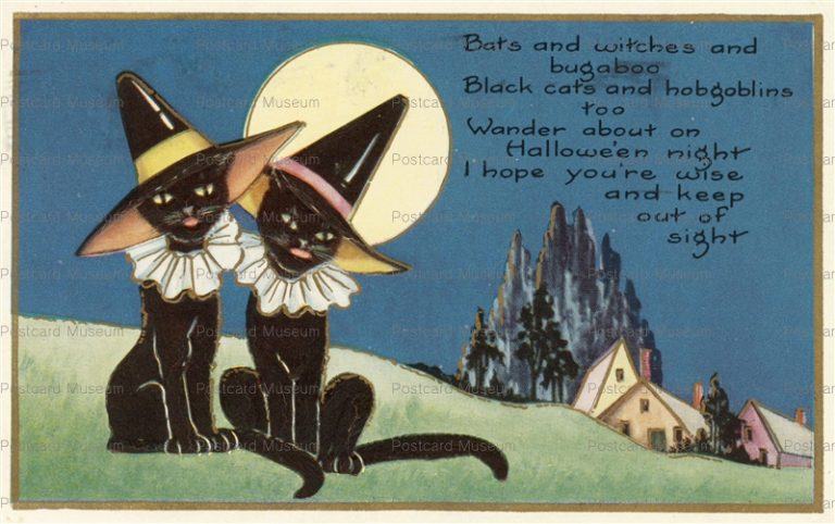 chr300-Halloween Witches Black Cats Full Moon