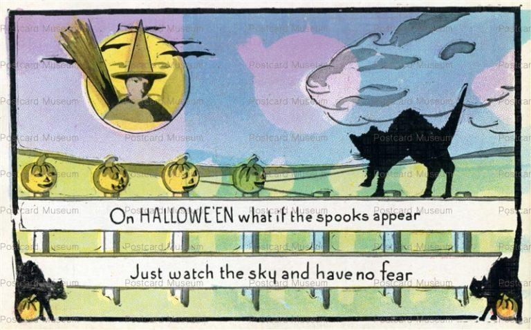 chr330-Halloween Witch Black Cat Series 412 c1915