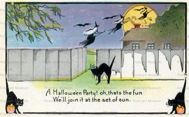 chr340-Halloween Party Witch Black Cat